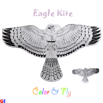 flat eagle kite - color & fly