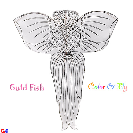 Chinese goldfish kite - color and fly