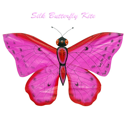 Hot Pink Butterfly Kite
